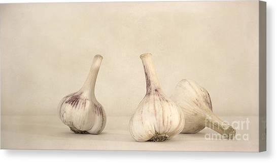 Still Life Canvas Print - Fresh Garlic by Priska Wettstein