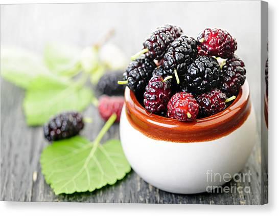 Wild Berries Canvas Print - Fresh Mulberries by Elena Elisseeva