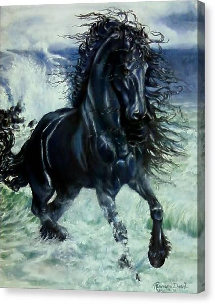 Friesian Storm Canvas Print