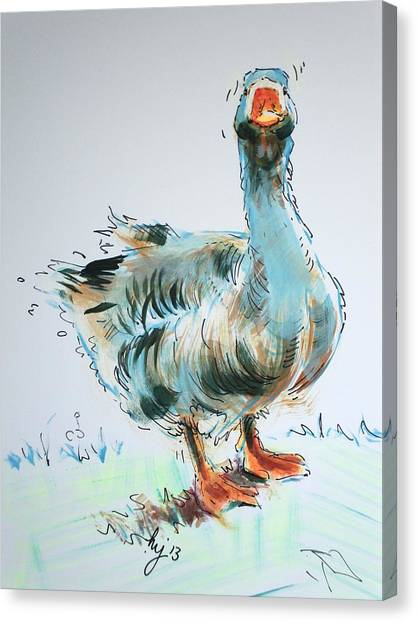 Goose Drawing Canvas Print