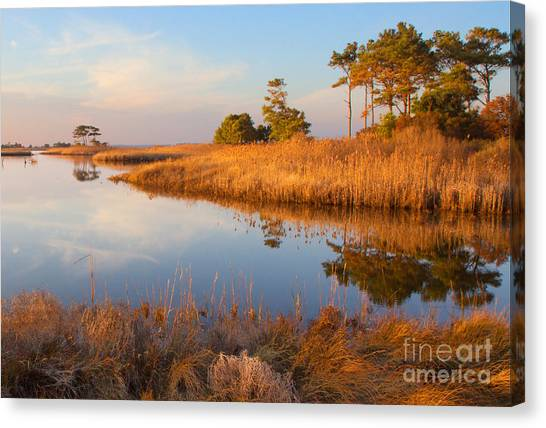 Gordons Pond Canvas Print by Robert Pilkington