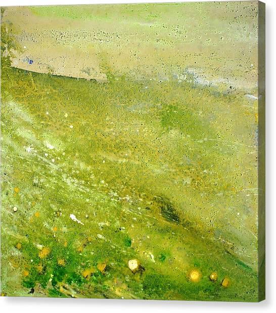 Green Field  Canvas Print by Tanya Byrd