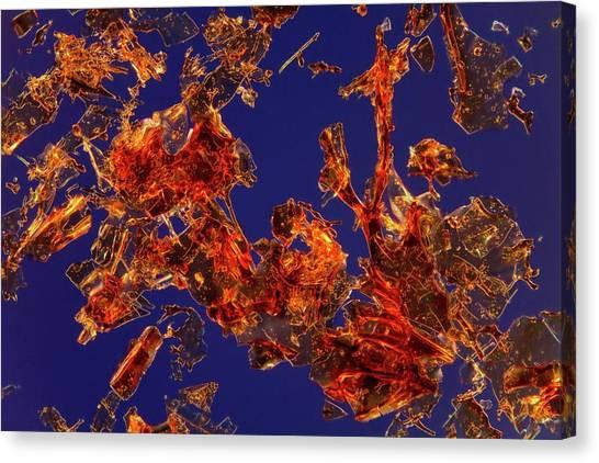 Biochemistry Canvas Print - Haemoglobin Crystals by Antonio Romero