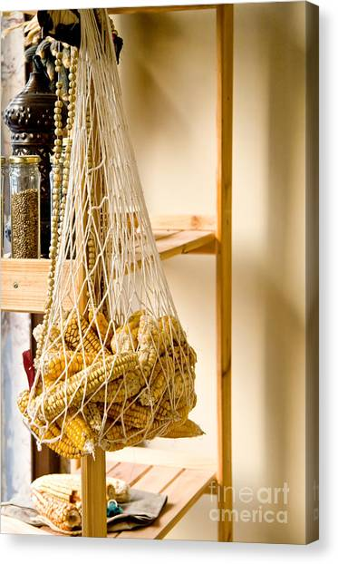 Corn Maze Canvas Print - Hanged Dry Organic Corns In A Net by Leyla Ismet