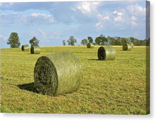 Hay Bales In Spring Canvas Print