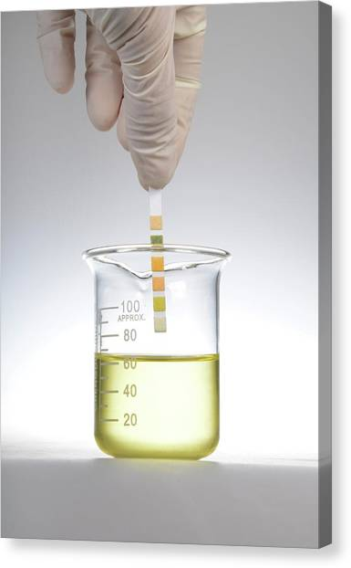 Reference Canvas Print - Home Urine Test by Cordelia Molloy