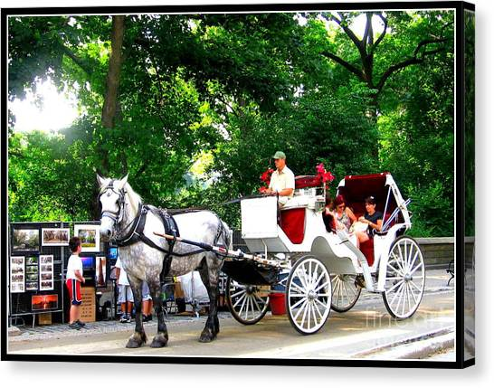 Horse And Carriage In Central Park Canvas Print