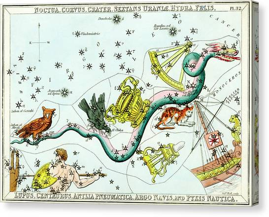 Hydra Constellation Canvas Print by Royal Astronomical Society/science Photo Library