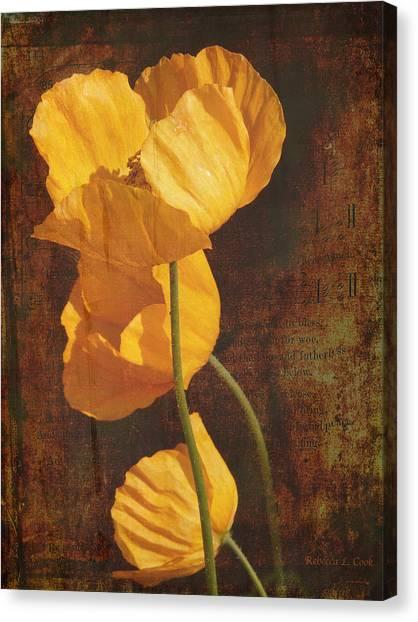 Icelandic Poppy Canvas Print