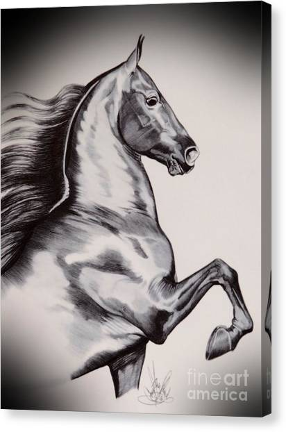 Into The Wind - Saddlebred Canvas Print