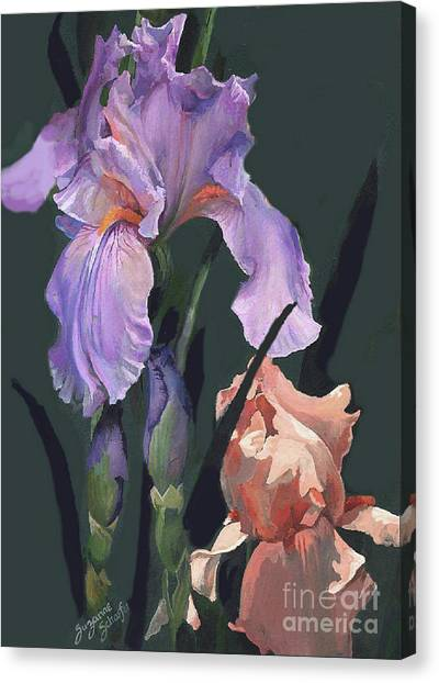 Iris Study Canvas Print by Suzanne Schaefer