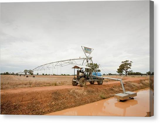 Ditch Canvas Print - Irrigation Ditch by Ashley Cooper