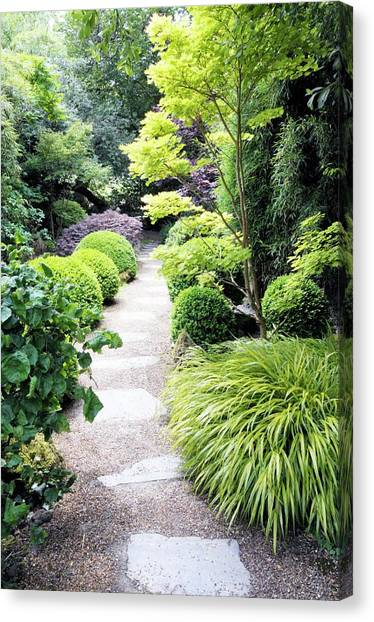 Japanese Garden Canvas Print by Anthony Cooper/science Photo Library