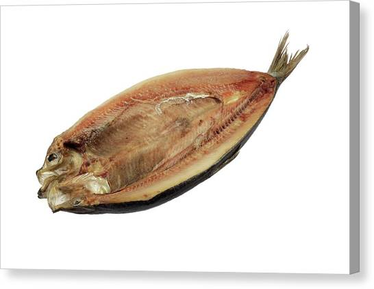 Fillet Canvas Print - Kipper by Geoff Kidd/science Photo Library