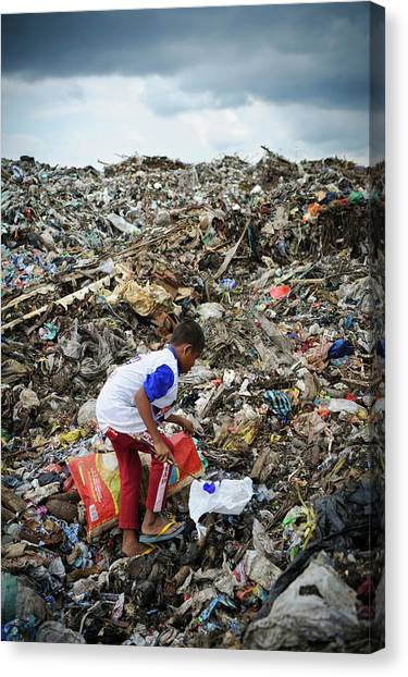 South Asia Canvas Print - Landfill Scavenging by Matthew Oldfield