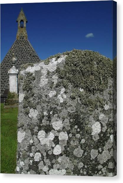 Pollution Canvas Print - Lichen On Gravestone In Unpolluted Air by Cordelia Molloy