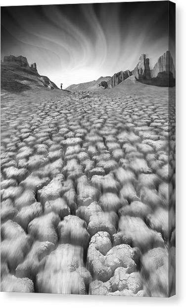 Black Rock Desert Canvas Print - Long Walk by Mike McGlothlen