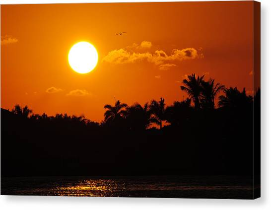 Marco Island Sunset Canvas Print