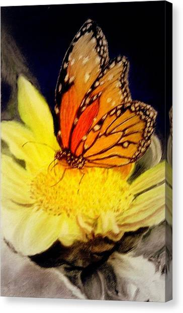 Monarch Resting Sold Pastel Canvas Print