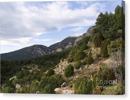 Mountain Landscape In Huesca Canvas Print