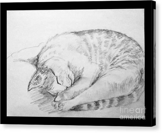 My Pet Cat Canvas Print