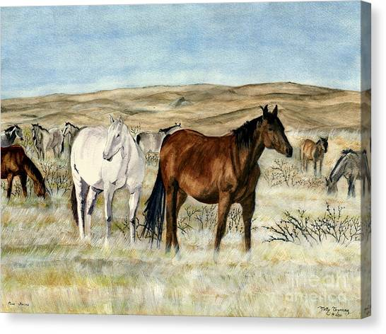 Black Stallion Canvas Print - Nine Horses by Melly Terpening