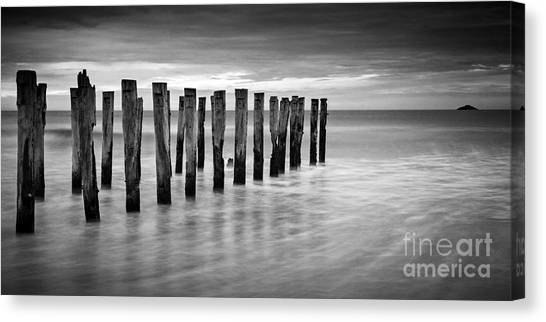 St Clair Canvas Print - Old Jetty Pilings Dunedin New Zealand by Colin and Linda McKie