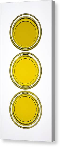 Condiments Canvas Print - Olive Oil by Frank Tschakert