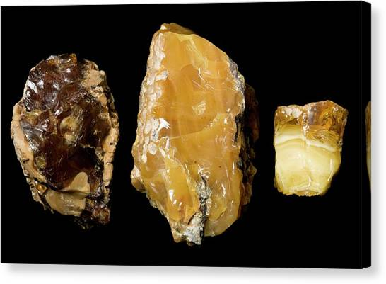 Opaque Amber Canvas Print by Pascal Goetgheluck/science Photo Library