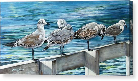 Pier Gulls Canvas Print