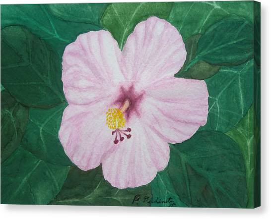 Pink Hibiscus Canvas Print by Patty Dopkin