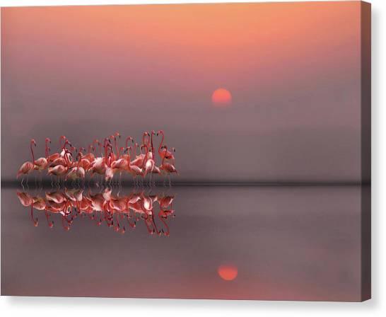 Crowd Canvas Print - Purple Sunset by Anna Cseresnjes