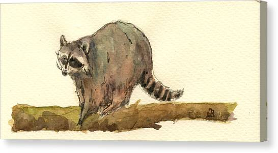 Raccoons Canvas Print - Raccoon by Juan  Bosco