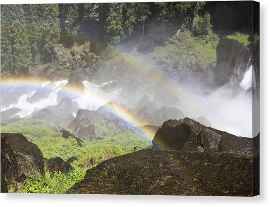 Canvas Print featuring the photograph Rainbow Twins by Priya Ghose