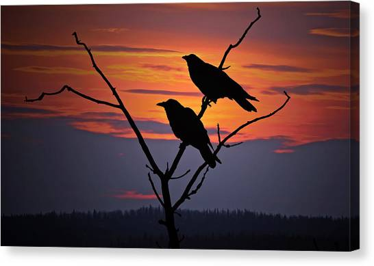 Stark Canvas Print - 2 Ravens by Ron Day