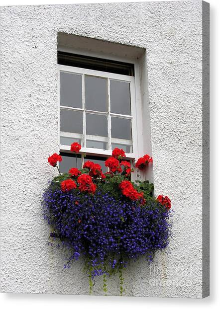 Red White And Blue Canvas Print by Mel Steinhauer