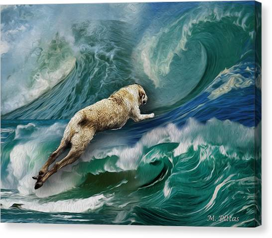 Rex Thinks He's A Dolphin Canvas Print