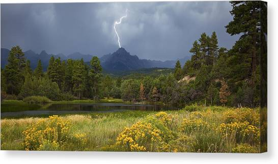 Run For Cover Canvas Print