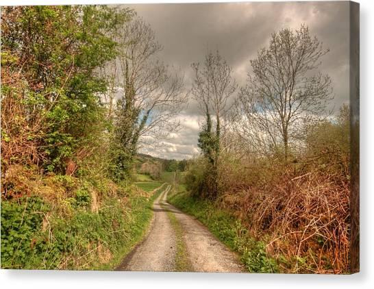 Dea Canvas Print - Rural Irish Road by John Quinn