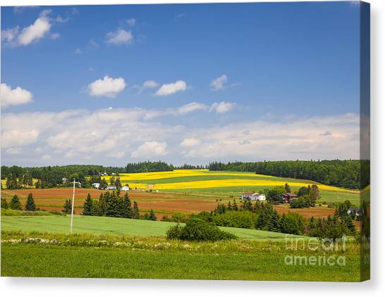 Prince Edward Island Canvas Print - Rural Landscape by Elena Elisseeva