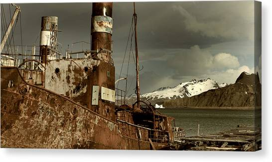 Antarctic Desert Canvas Print - Rusted Whaling Boats by Amanda Stadther