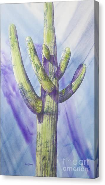Saguaro In Winter Canvas Print