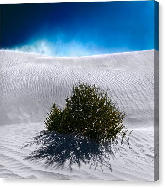 Canvas Print featuring the photograph Sand Storm by Julian Cook