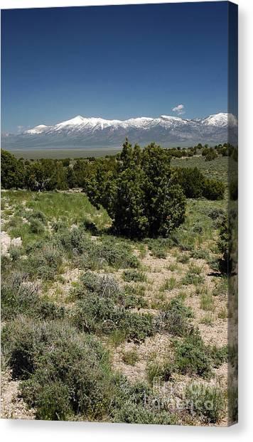 614p Schell Creek Range Nv Canvas Print