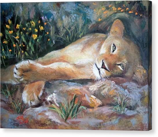 Sleep Lion Canvas Print
