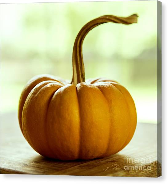 Pumpkins Canvas Print - Small Orange Pumpkin by Iris Richardson