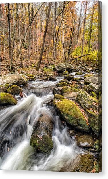 Smoky Mountain Stream 2 Canvas Print