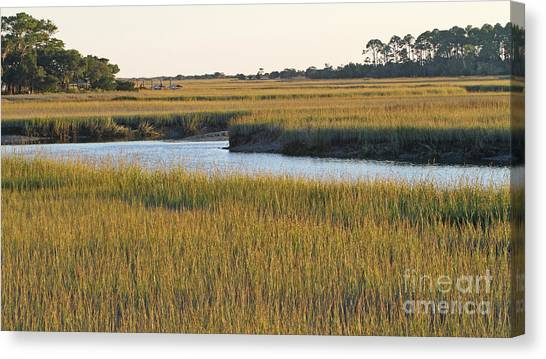 South Carolina Salt Marsh Canvas Print