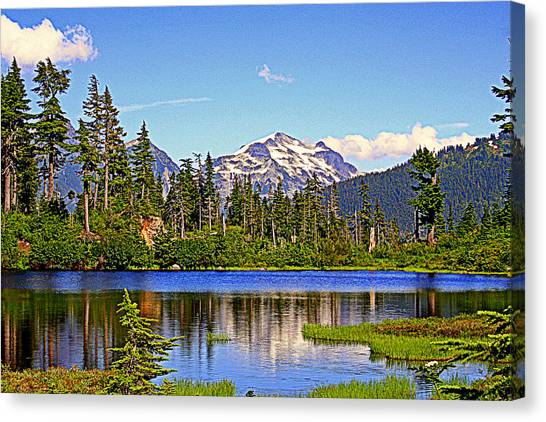 Spring In The Cascades Canvas Print