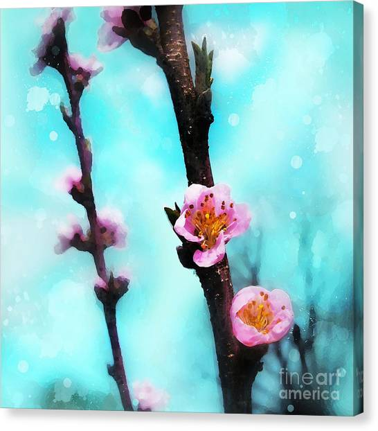 Springs Arrival Canvas Print
